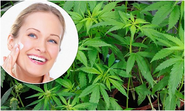 cbd oil can be used for acne treatment