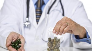 doctor about cannabis
